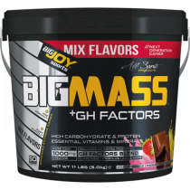 Bigjoy BigMass +Gh Factor