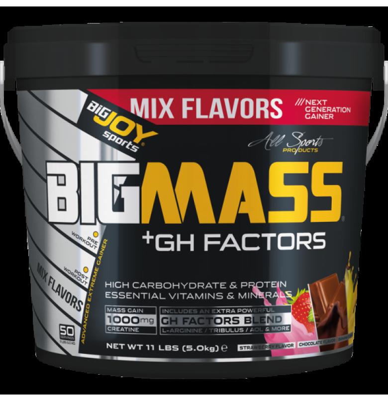 Bigjoy BigMass +Gh Factor Mix
